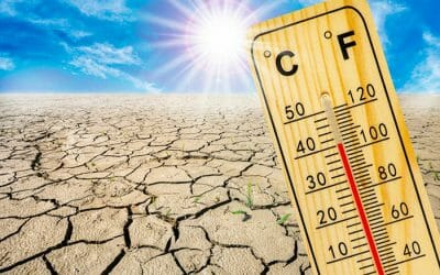 Heat and drought emergencies trigger protections against rent gouging